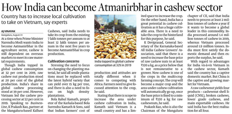 AATMNIRBHAR VERSION : CASHEW SECTOR Local cultivation increase needed to take on vietnam